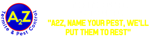 Your Pest Solution